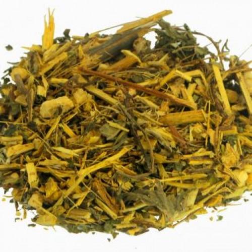 MÃO DE DEUS ( Tithonia diversifolia )