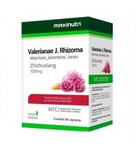 Valerianae J. Rhizoma Valeriana Jatamensi Jones 60 Cápsulas - Maxinutri