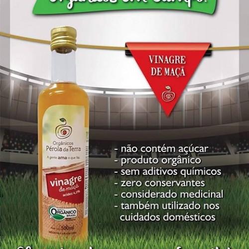 VINAGRE DE MAÇÃ ORGÂNICO 500ML PEROLA DA TERRA ACIDEZ 4,2%