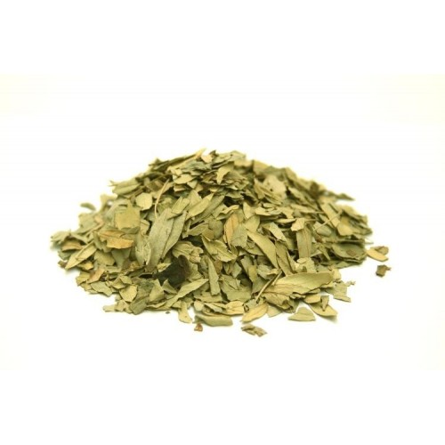 SENE ( Cassia angustifolia )